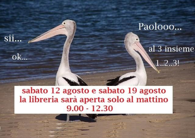 pelicans-446864__340